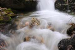 Ptarmigan-Creek